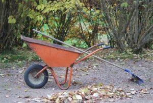 Edmonton Parging Fall Clean Up